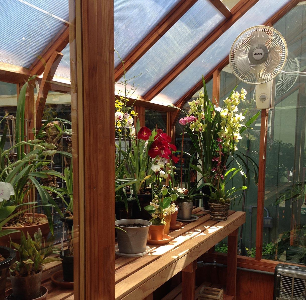 mẫu nhà kính mini trồng hoa lan trên sân thượng