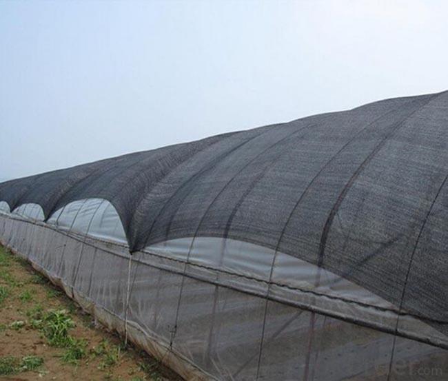 lưới che nắng sử dụng kết hợp với nhà kính nông nghiệp