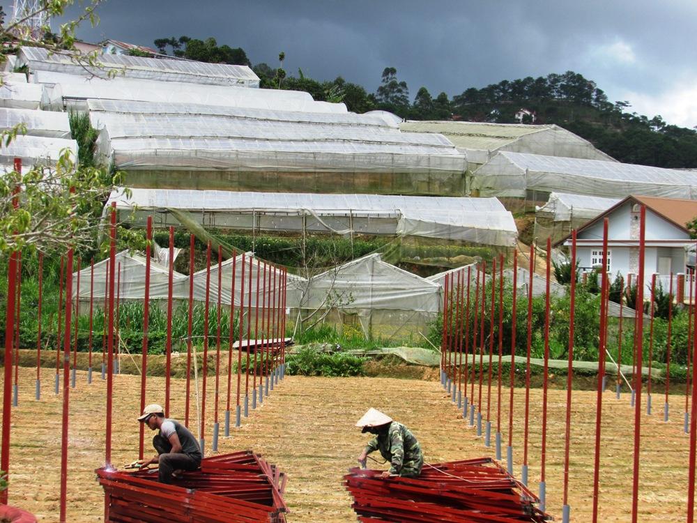 3 Loại lưới chắn côn trùng xuất hiện trên mọi công trình ở Việt Nam