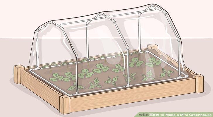 Hướng dẫn làm nhà kính mini đơn giản bằng vật dụng trong nhà