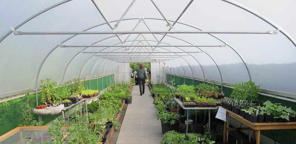 công trình dùng cuộn màng nhà kính Hyplast 4m2 trồng hoa lan